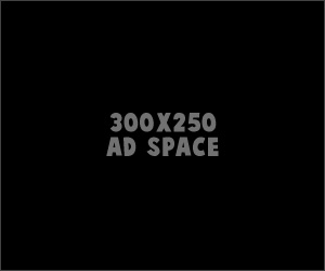 300x250 Ad Space